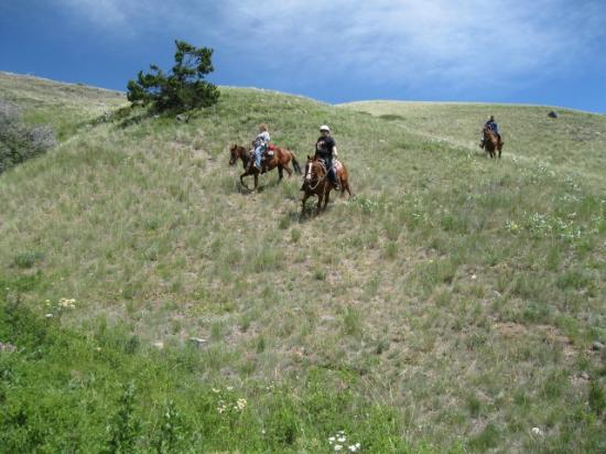 Bear Creek Ranch: Riding down a steep hillside.