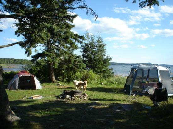 Bar Harbor Campground KOA: Campsite!