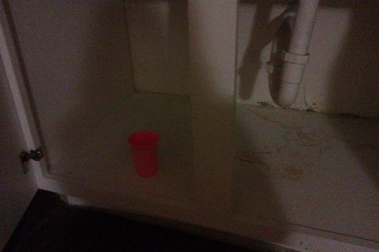 Quality Inn and Suites: under sink in living room, cup was there already!