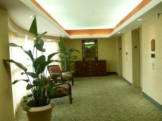 Holiday Inn Tampa Westshore: Outside elevators on our floor