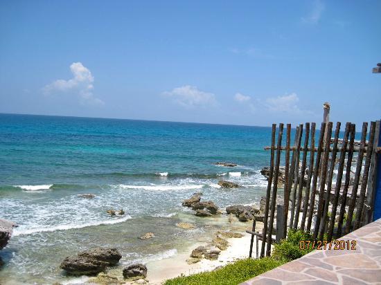 Casa Roca Caribe: Nice!