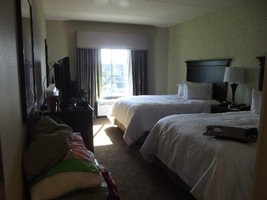Hampton Inn Pigeon Forge Picture