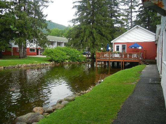 Woodward's Resort: duck and trout pond at resort property down the road