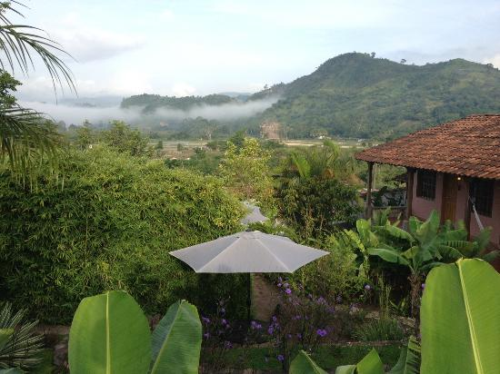 La Casa de Cafe: The view from my room, on the terrace where we eat breakfast