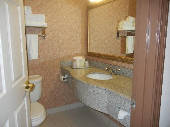 Holiday Inn Express Syracuse / Fairgrounds: bathroom