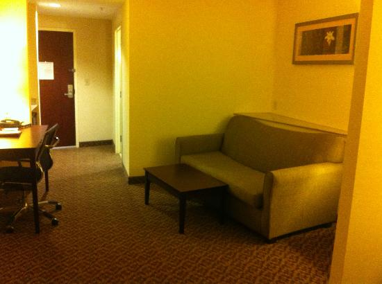 Comfort Suites Cicero - Syracuse North: Living area with sofa bed