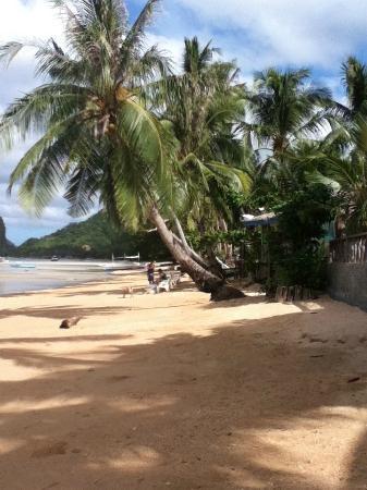 写真Coral Bay Resort枚