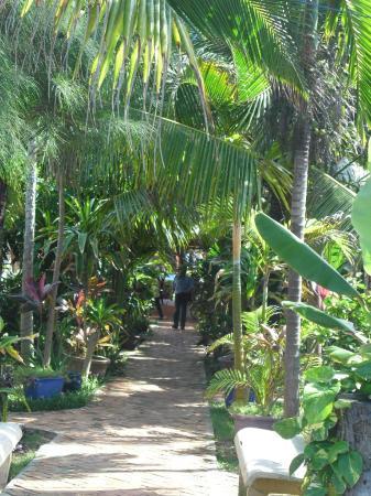 Hoang Kim Golden : Lush gardens