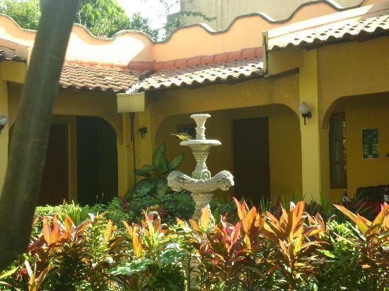 Hotel Mediterraneo Plaza: jardín
