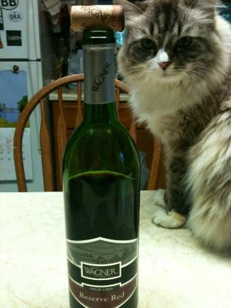 Wagner Vineyards: The RagDoll and the Red