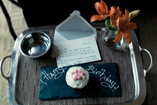 The St. Regis Deer Valley: Suki's birthday cupcake