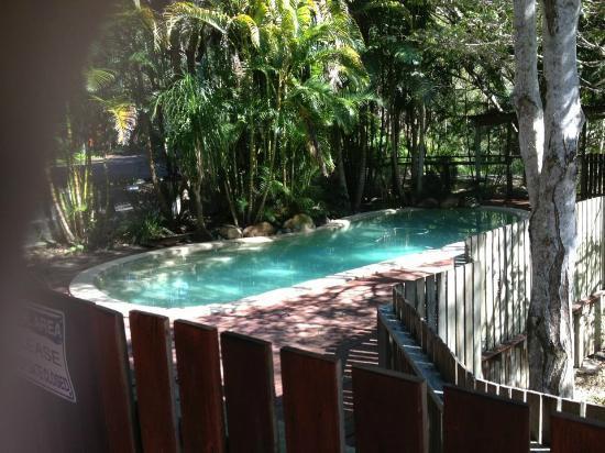Kondalilla Eco Resort: Private Pool (Picnic Creek Cabin)