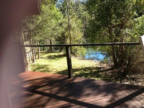 Kondalilla Eco Resort: View of the Creek