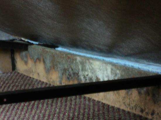 Super 8 Hancock MD: bed frame mold