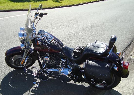 Double Shot Motorcycle Tours: The beautiful Harley Davidson bike!