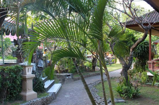Ida Hotel: Outdoor