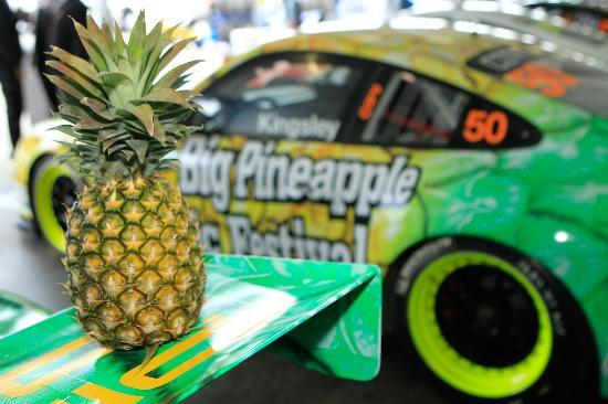 The Big Pineapple Festival coming soon!
