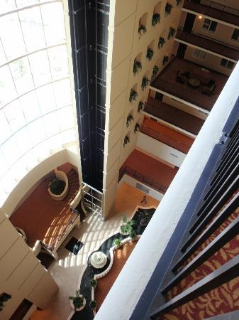 Embassy Suites by Hilton Tampa - Downtown Convention Center: Inside view of hotel 2