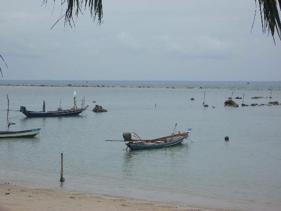 Samahita Retreat: Fishing boats