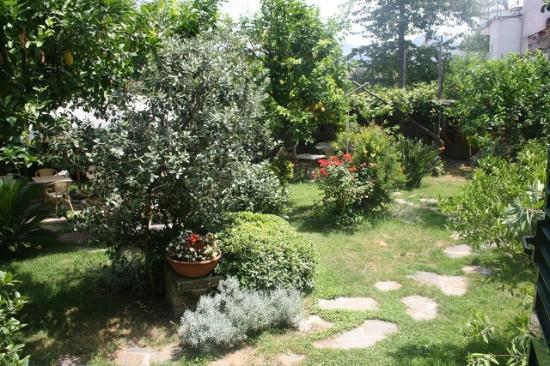 B&B Il Roseto: The garden/breakfast area