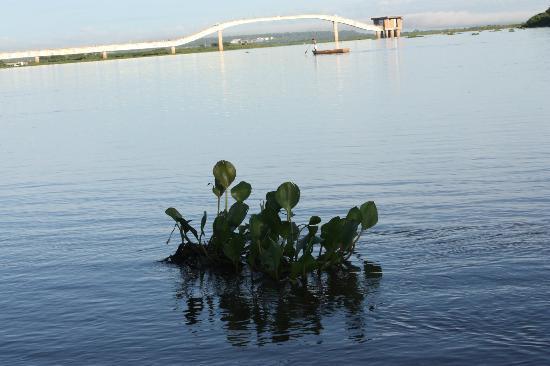 Estacao Natureza Pantanal: la reviére paraguai