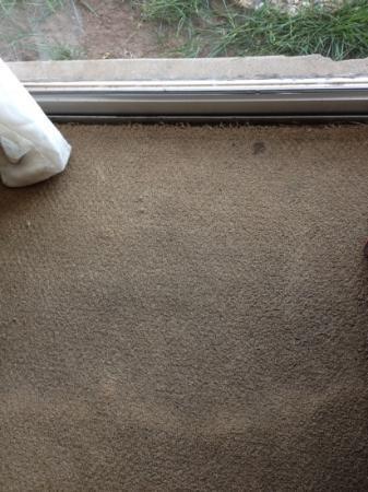 Ramada Oklahoma City Near Bricktown: dirty carpet