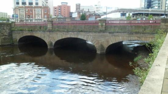 Five Weirs Walk: Ladys Bridge
