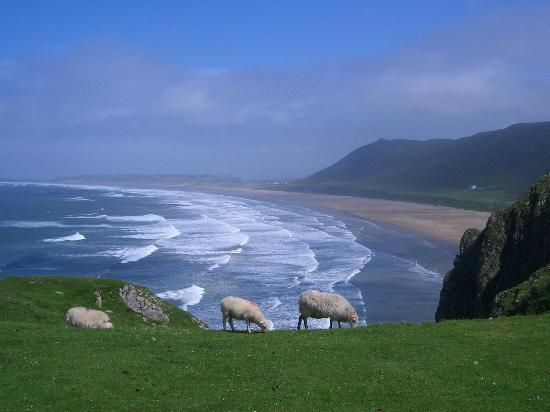 Rhossili Bay: View of Rhosilli Bay