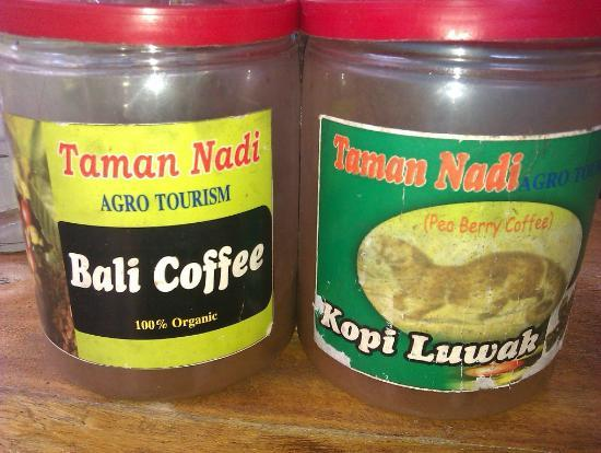 Kopi Luwak: balines coffee and coffee luwak