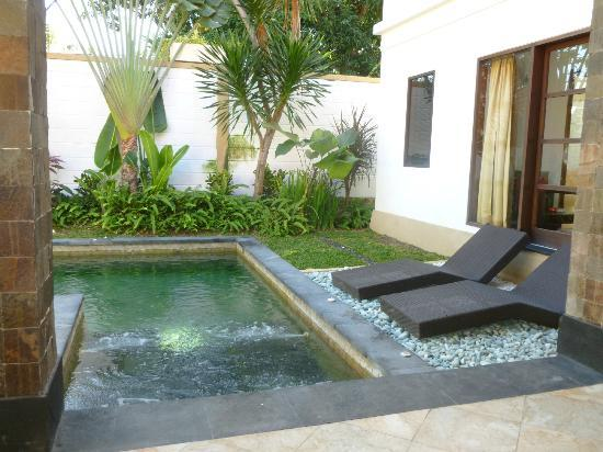 Dampati Villas: Pool and gardens