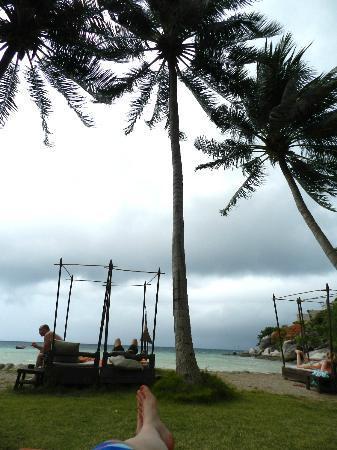 Koh Tao Cabana: Bech & sunbeds