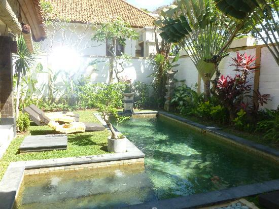 Dampati Villas: Pool
