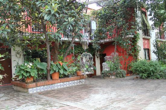 Casa Gigi Guest House: Garden
