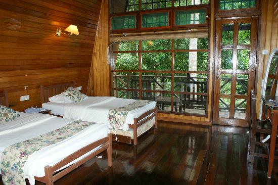 Tabin Wildlife Resort: River Lodge 9