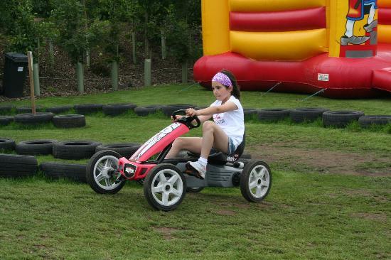 Skylark Maize Maze & Funyard: Go-karts