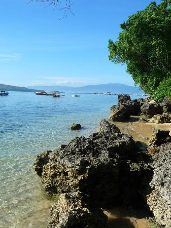 Raja Laut Dive Resort: The beach at low tide