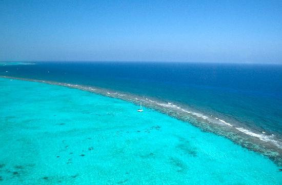 Cayman Islands: The Reef, Grand Cayman