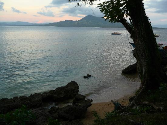 Raja Laut Dive Resort: The beach at middle tide