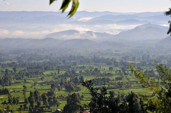 Batwa Trail