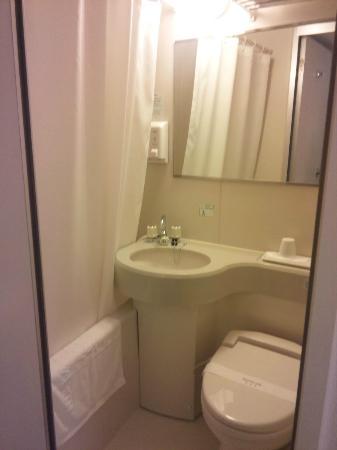 Kawasaki Green Plaza Hotel: バスルーム