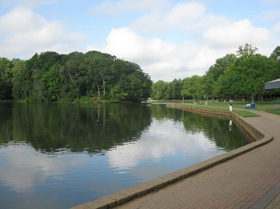 Plenty of things to do walk bike fish and relax for Koi pond traduzione