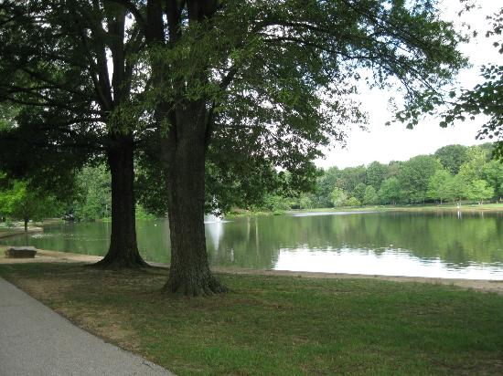 Many Places To Relax In The Shade Picture Of Allen Pond