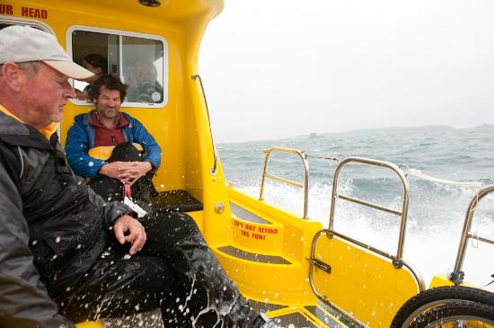 Bumblebee Boat Cruises: the mate being very solidary with the travellers