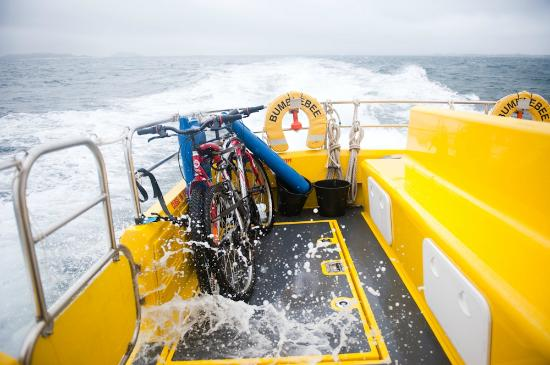 Bumblebee Boat Cruises: rough day, bikes strapped tightly