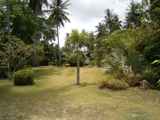 Blue Ocean Garden Beach Resort: lush gardens