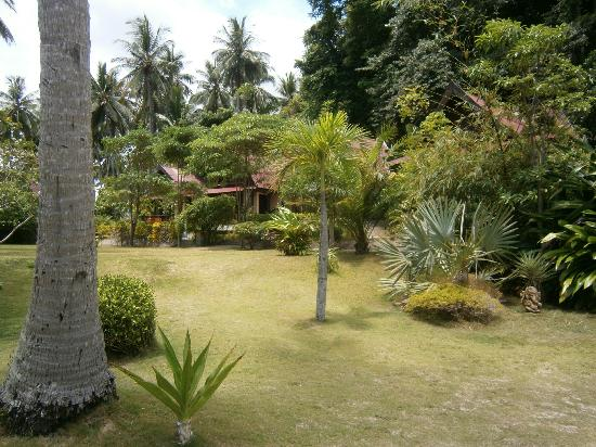 Blue Ocean Garden Beach Resort: grounds