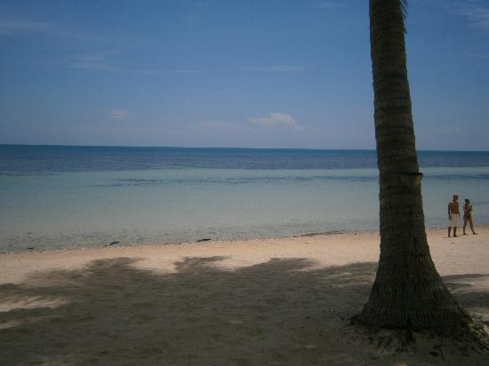Blue Ocean Garden Beach Resort: the beach
