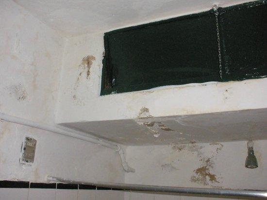 El Viajero Colonia Hostel & Suites: Detalle humedad 2