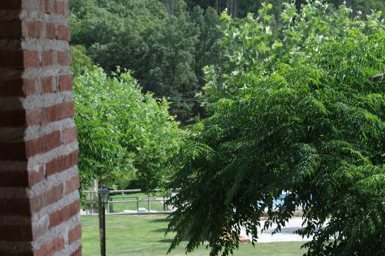 Las Cabañas de la Vera: Inmenso jardín para el disfrute de grandes y pequeños