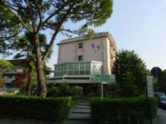 Hotel Rosapineta: Hotel lato